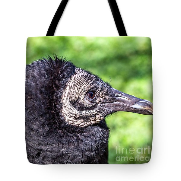 Tote Bag featuring the photograph Black Vulture Waiting For Prey by Bernd Laeschke