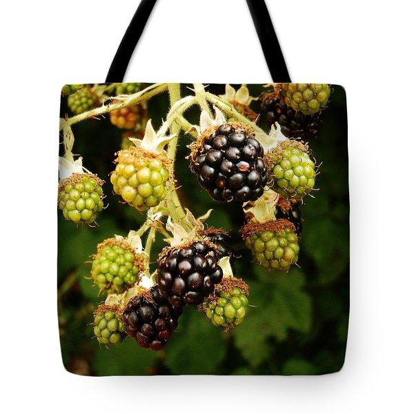 Blackberries Tote Bag by VLee Watson