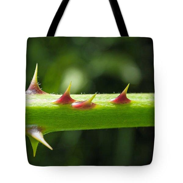 Blackberry Thorns Tote Bag by Tikvah's Hope