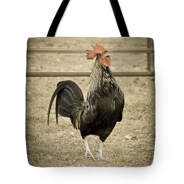 Blackbird Crowing Tote Bag by Cheryl McClure