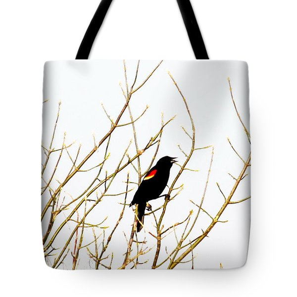 Blackbird Singing A Happy Tune Tote Bag by Tina M Wenger