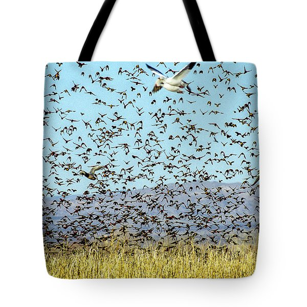 Blackbirds And Geese Tote Bag