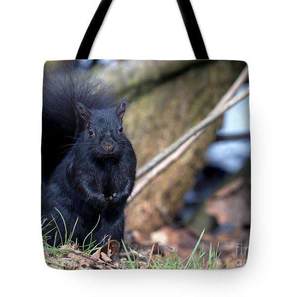 Blackie Tote Bag by Sharon Talson