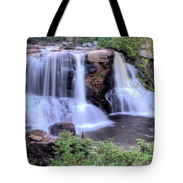 Blackwater Falls Tote Bag by Gordon Elwell