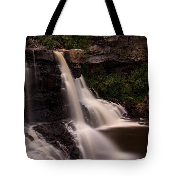 Blackwater Falls Tote Bag by Shane Holsclaw