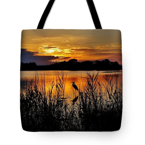Blackwater Morning Tote Bag by Robert Geary