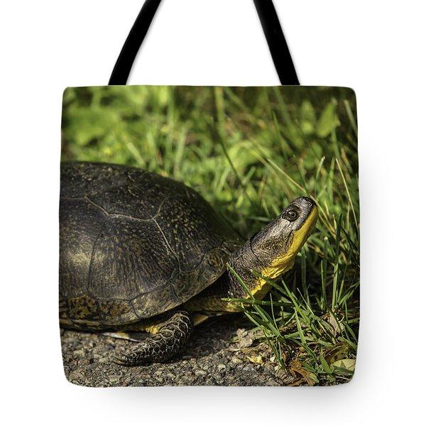 Blanding's Turtle Tote Bag