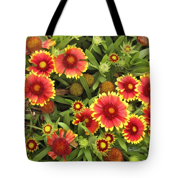 Blanket Flowers  One - Photography Tote Bag