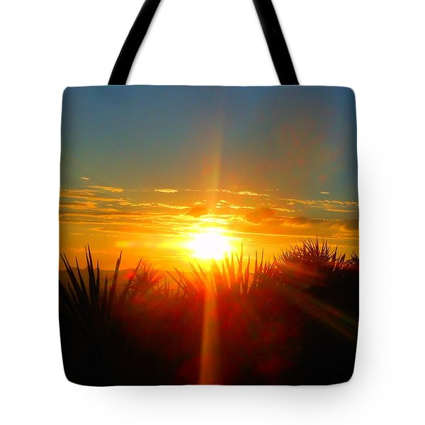 Blaze In The Desert Tote Bag
