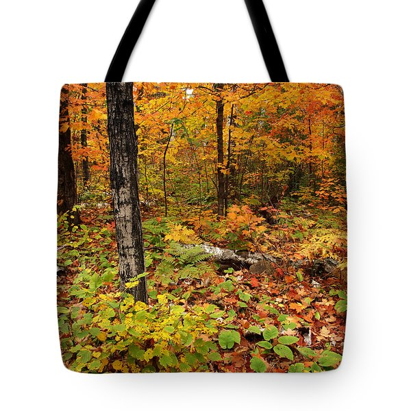 Tote Bag featuring the photograph Blazing Forest by James Peterson