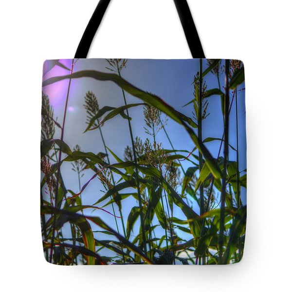 Blazing Rays Tote Bag