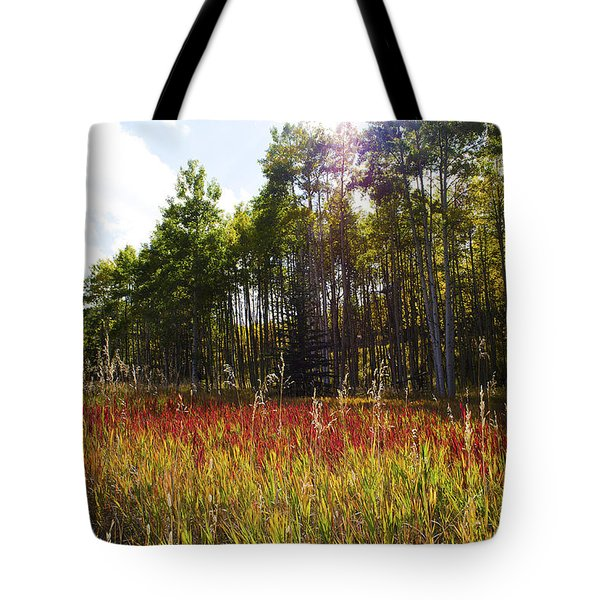 Blazing Red Grass In Colorado Tote Bag
