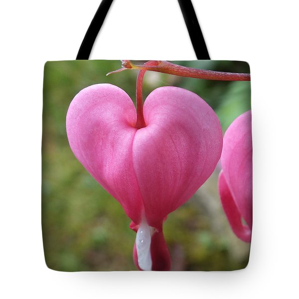Bleeding Harts Upclose Tote Bag by Duane McCullough