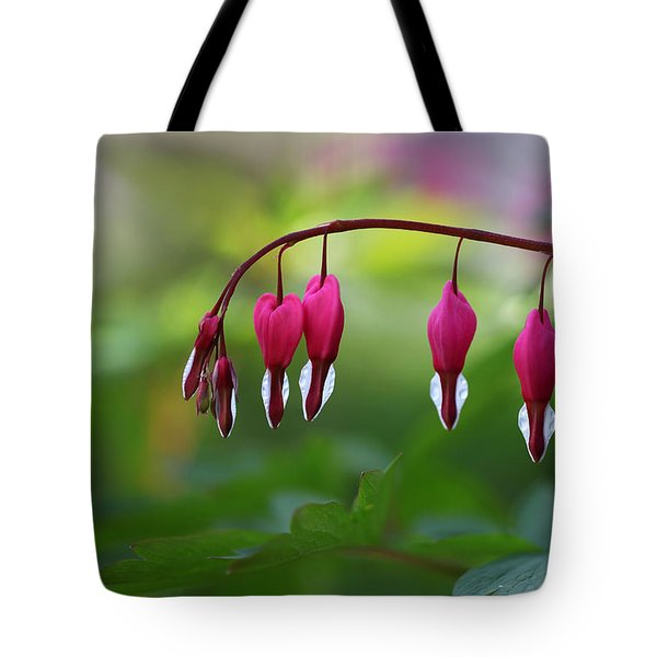 Tote Bag featuring the photograph Bleeding Hearts by Annie Snel