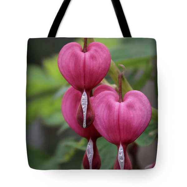 Bleeding Hearts Tote Bag by Joseph Skompski