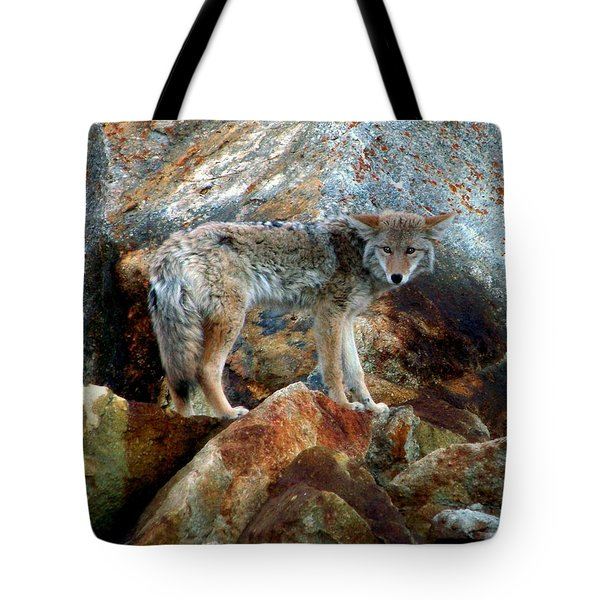 Blending In Nature Tote Bag by Karen Wiles