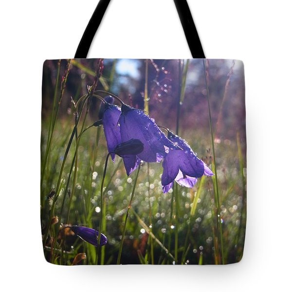 Blessing Of A New Day Tote Bag by Agnieszka Ledwon