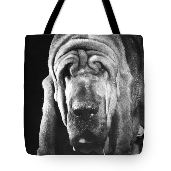 Bloodhound Portrait Tote Bag by ME Browning
