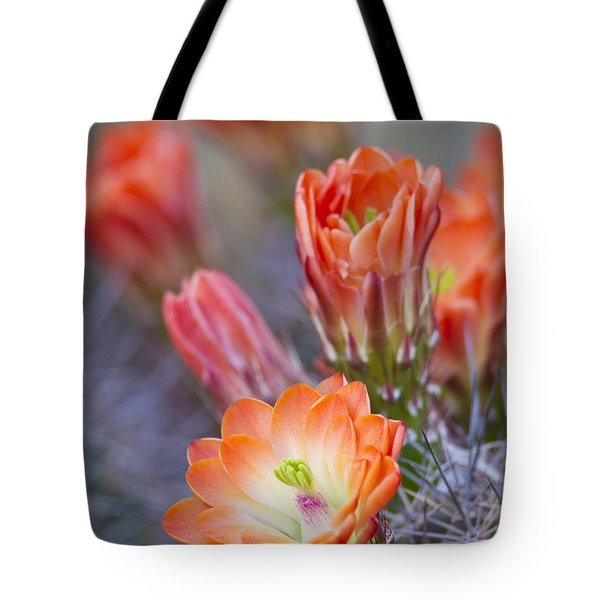 Tote Bag featuring the photograph Bloom In Orange by Bryan Keil
