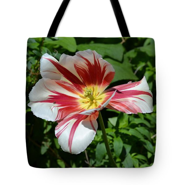 Tote Bag featuring the photograph Bloom by Tara Potts