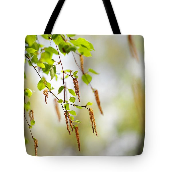 Blooming Birch Tree Tote Bag by Jenny Rainbow