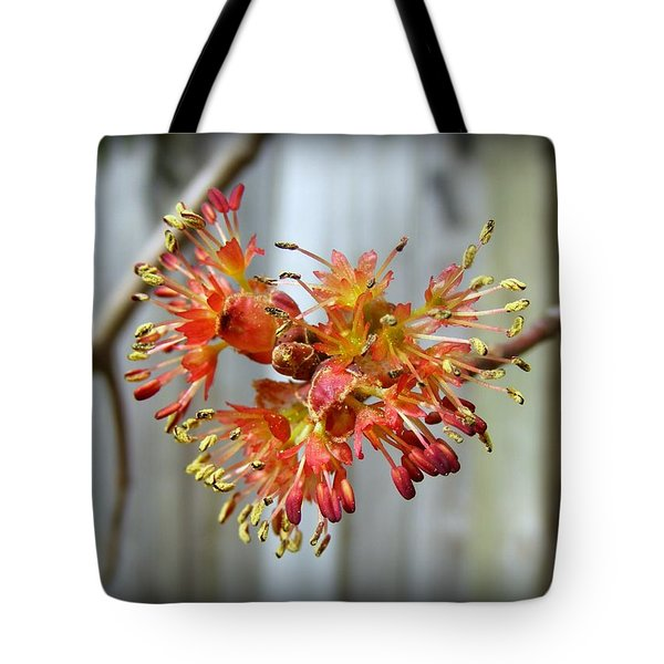 Tote Bag featuring the photograph Blooming Buds by Kelly Nowak