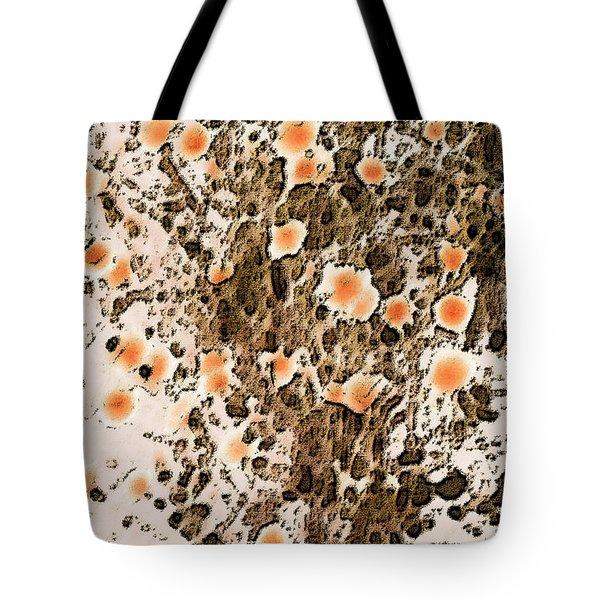 Blooming Desert No 1 Tote Bag by Ben and Raisa Gertsberg