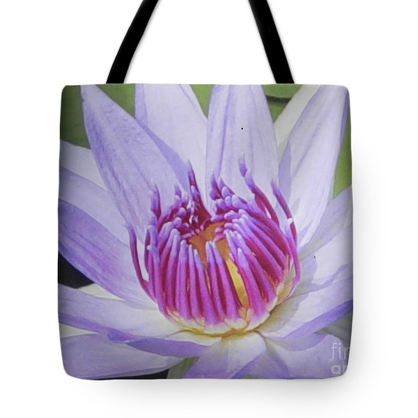 Blooming For You Tote Bag by Chrisann Ellis
