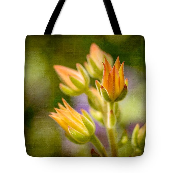 Blooming Succulents I Tote Bag