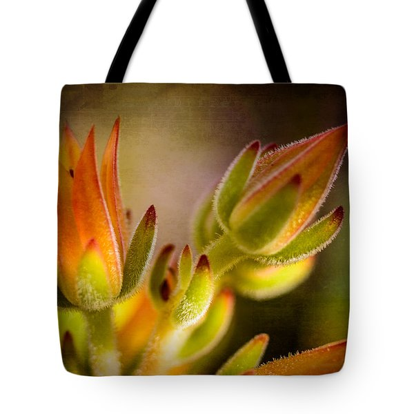 Blooming Succulents Iv Tote Bag