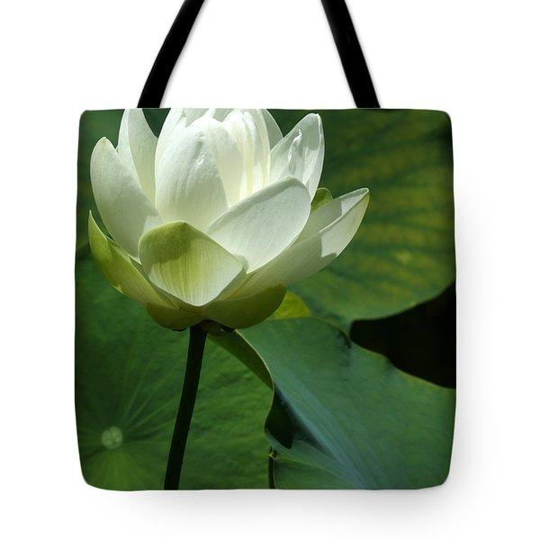 Blooming White Lotus Tote Bag