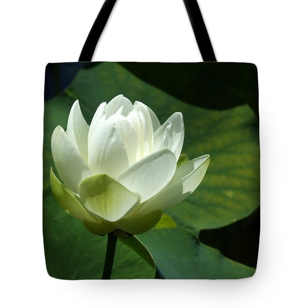 Blooming White Lotus Tote Bag