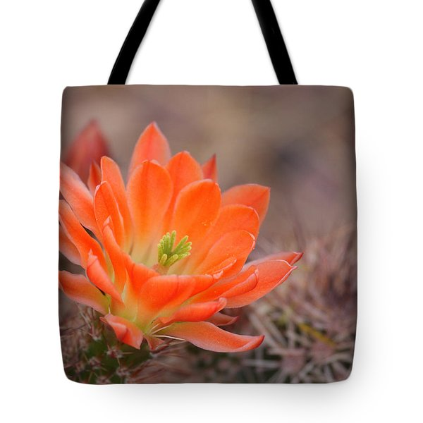 Tote Bag featuring the photograph Blooms In Orange by Ruth Jolly