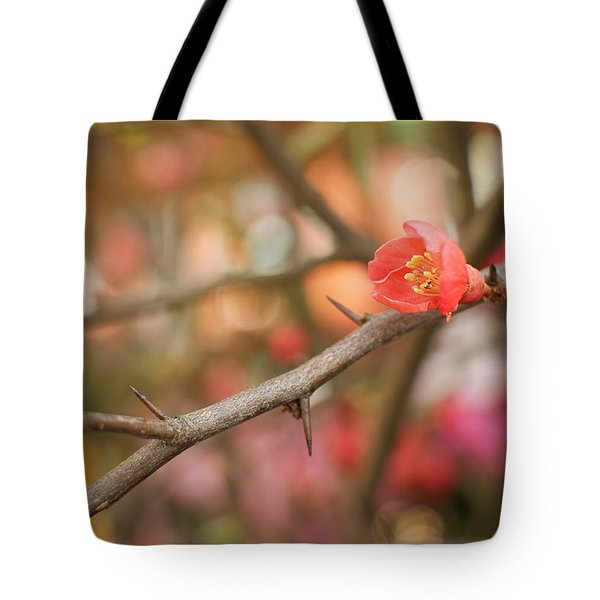 Tote Bag featuring the photograph Blossom Amidst The Thorns by Lisa Knechtel