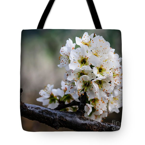 Blossom Gathering Tote Bag