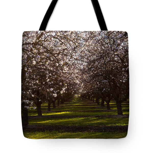 Blossom Tunnel  Tote Bag