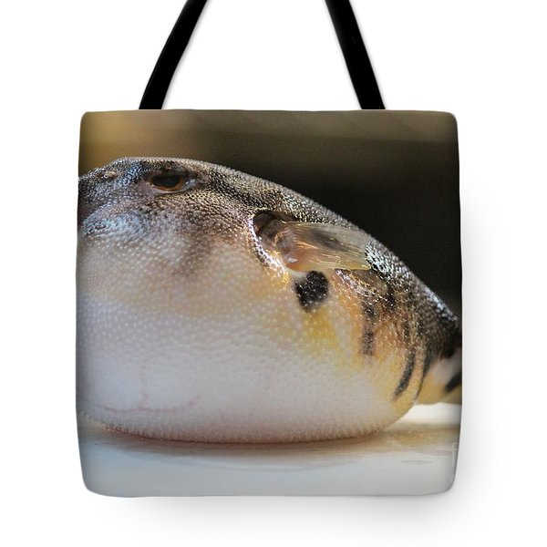 Blowfish 2 Tote Bag by Cynthia Snyder