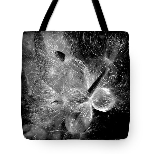 Tote Bag featuring the photograph Blowing In The Wind by Lucinda Walter