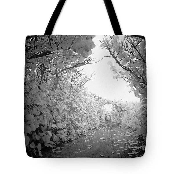 Blowing Rocks Jupiter Florida Tote Bag