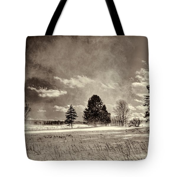 Blowing Snow Canaan Valley Tote Bag by Dan Friend