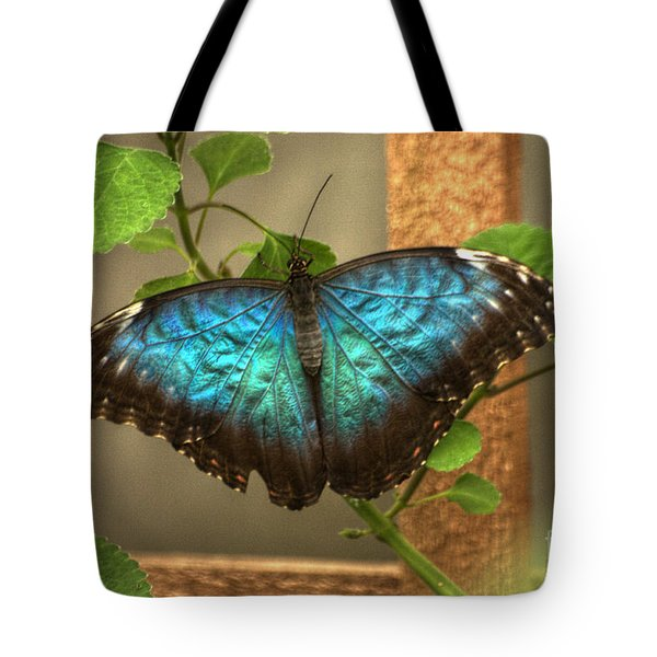 Blue And Black Butterfly Tote Bag