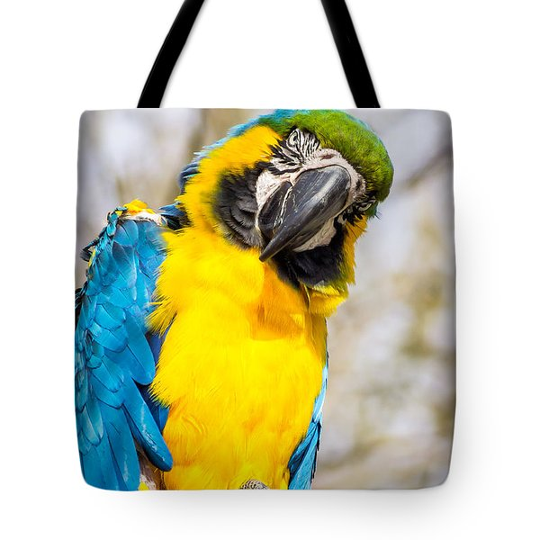 Blue And Gold Macaw Parrot Tote Bag