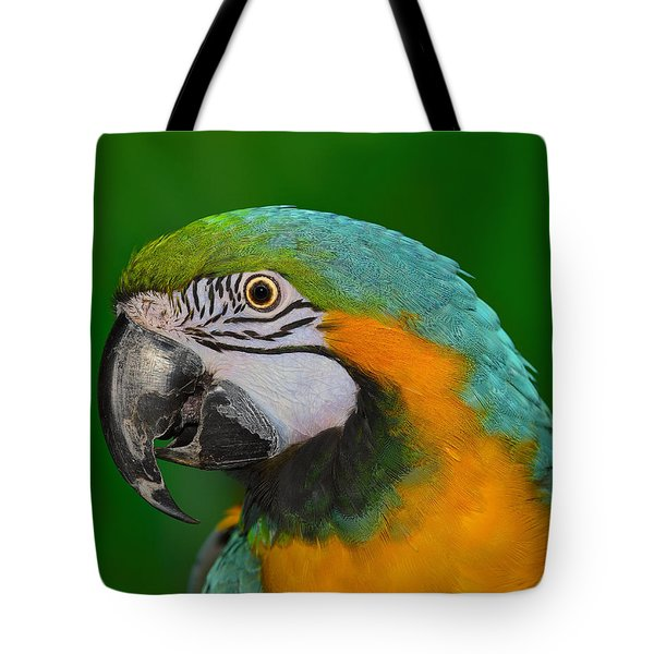 Blue And Gold Macaw Tote Bag by Tony Beck