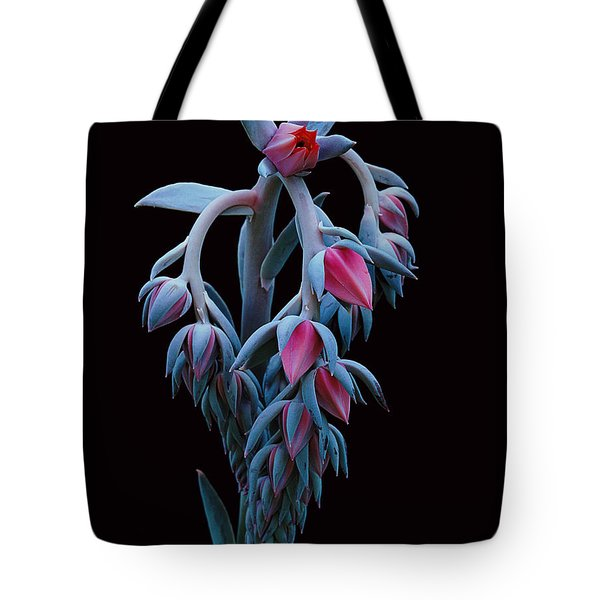 Blue And Pink Succulent Tote Bag
