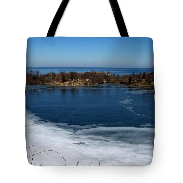 Blue And White Tote Bag by Catherine Gagne
