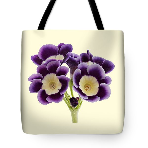 Blue Auricula On A Cream Background Tote Bag