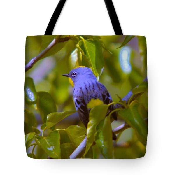 Blue Bird With A Yellow Throat Tote Bag by Jeff Swan