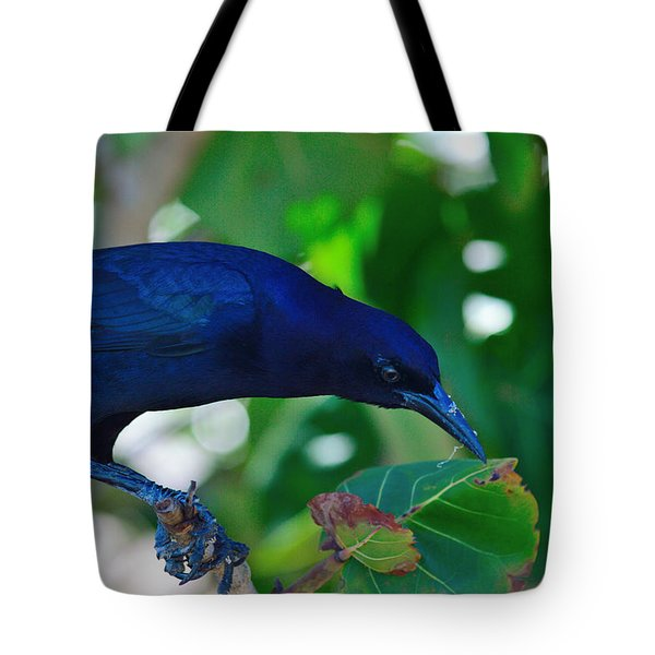 Blue-black Black Bird Tote Bag by Susan Molnar