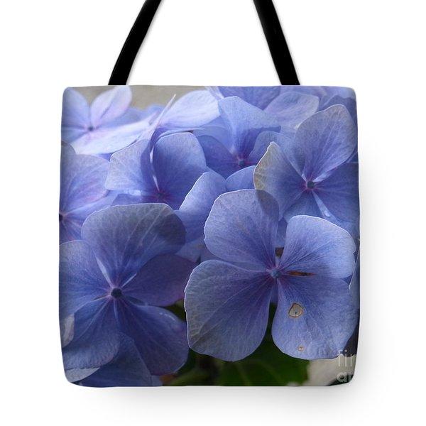 Tote Bag featuring the photograph Blue Blaze by Agnieszka Ledwon