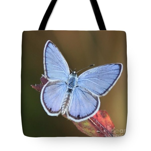 Blue Butterfly Square Tote Bag by Carol Groenen